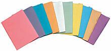 Салфетки голубые для пациентов Econoback 2-слойные (500 шт.)
